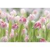 <strong>Fototapete 'Secret Garden' - 368 x 254 cm</strong> von Komar