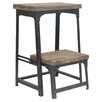 Crestview Collection Industria 2-Step Step Stool