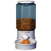 Ergo Pet Auto Pet Feeder