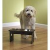 Petrageous Designs Elevated Dog Feeder with  Bowls