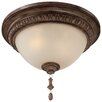 <strong>Minka Lavery</strong> Candlewood 2 Light Flush Mount
