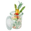 Paderno World Cuisine Mini Glass Jar with Lid (Set of 12)