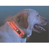 <strong>Nite Ize</strong> Nite Dawg LED Dog Collar