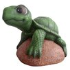 DHI Accents Turtle on Rock