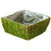 SuperMoss™ Square Santee Moss Basket (Set of 12)