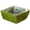 <strong>SuperMoss™</strong> Square Santee Moss Basket