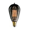 Bulbrite Industries 25W Smoke Incandescent Light Bulb