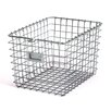 Spectrum Diversified Storage Basket