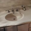 "<strong>Swanstone</strong> Chesapeake 61"" Single Bowl Vanity Top"