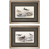 Gulls / Oyster Wall Art (Set of 2)