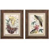 Fancy Flight I/II Wall Art (Set of 2)