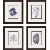 Indigo Kelp by Unknown Waterfront Art (Set of 4) - 21&quot; x 18&quot;