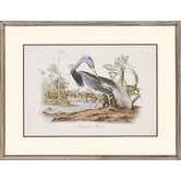 Audubon Herons by Audubon Traditional Art (Set of 2) - 24&quot; x 31&quot;