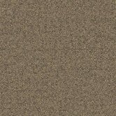 Beech Tree Lane Square Carpet Tile in Shining