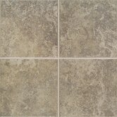 Castle De Verre 10&quot; x 13&quot; Wall Field Tile in Grey Stone