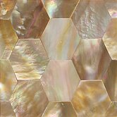 "Ocean Jewels 2"" x 2"" Hexagon Accent Tile in Brown Lip"