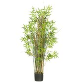 60&quot; Silk Bamboo Grass Plant in Green