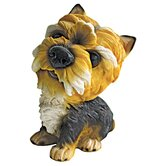 Prized Pup Yorkshire Terrier Puppy Dog Statue