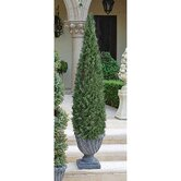 The Topiary Cone Tree