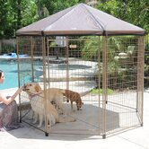Advantek Dog and Cat Crates/Kennels/Carriers