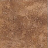 Vallano 12&quot; x 12&quot; Glazed Field Tile in Caramel