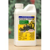 Spurge Power Herbicides Jug