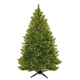 Evergreen Fir Prelit Christmas Tree with 450 Clear Lights