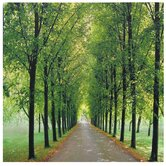 "Path of Life Canvas Wall Art - 19.75"" x 19.75"""
