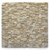 Modern 1/2&quot; x 3/4&quot; Mesh Tile in Dada
