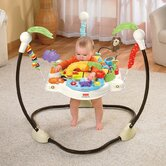 Fisher-Price Baby Bouncers
