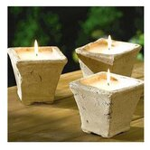 Citronella Candle (Set of 4) (Set of 4)