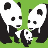 Animal - Three Pandas Stretched Wall Art