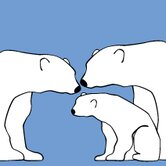Animal - Polar Bears Stretched Wall Art