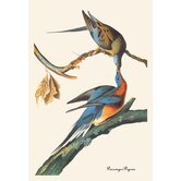 Passenger Pigeon Canvas Art