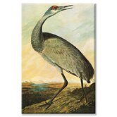 Sandhill Crane Painting Print on Canvas