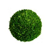 "Boxwood 10"" Ball"