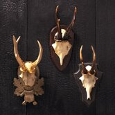 Curiosity Shop The Hunt Club Antler Trophy (Set of 3)