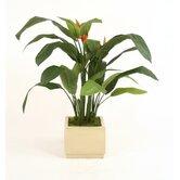 Distinctive Designs Faux Plants