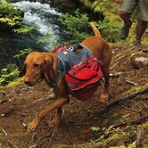 RuffWear Dog Backpacks