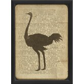 Ostrich Silhouette Framed Graphic Art