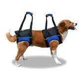 Zupport Theraputic Rear Dog Harness