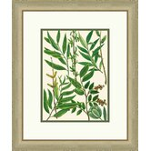 Emerald Foliage I Framed Graphic Art