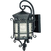 Scottsdale Large  Outdoor Wall Lantern in Country Forge