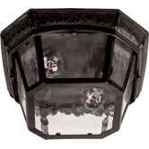 Garden Outdoor Flush Mount in Oriental Bronze