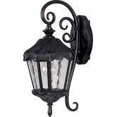 "Garden VX 19""  Outdoor Wall Lantern"