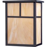 Craftsman Outdoor Wall Lantern in Burnished - Energy Star