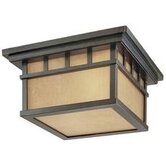Barton  Outdoor Flush Mount in Winchester