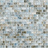 Shaw Floor & Wall Tile