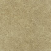Palmetto 17&quot; x 17&quot; Floor Tile in Gold