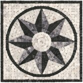 Mini Star Medallion Tile Accent in Black / White